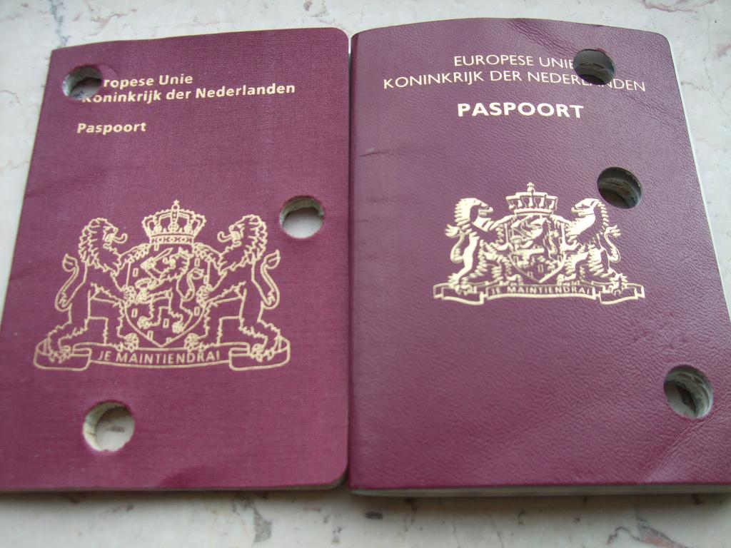 双重国籍:无人管的潜规则
