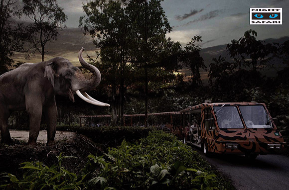 新加坡夜间动物园